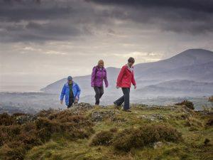 Castlewellan Forest Park – Slievenaslat Walk