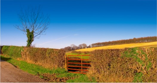 Farmers gate in front of blue sky
