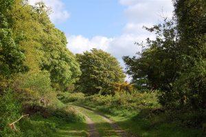 Castle Ward Boundary Trail
