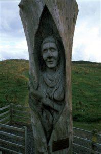 Corrog Wood