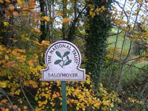 Ballymoyer Woodland