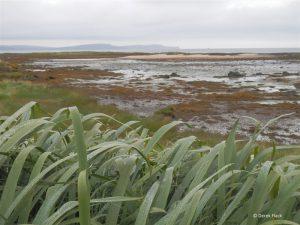 Ballymacormick Point