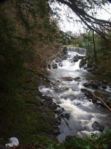 Crumlin Glen