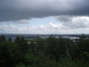 Ely Lodge Forest – Carrickreagh Viewpoint Walk
