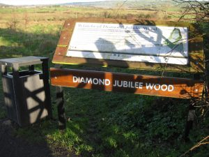 Whitehead Diamond Jubilee Wood
