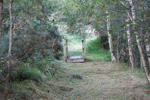 Ballyroney Lackan Bog Walk