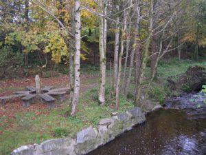 Ballymoyer Woodland