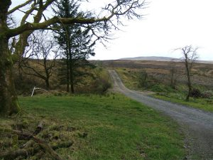 Causeway Hill – from Killeter village