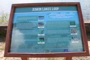 Jenkin Forest and Lakes