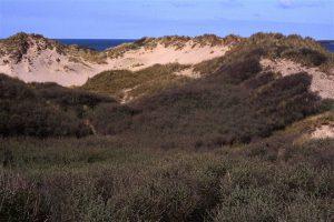 Portstewart Strand – Sand Dune & Estuary Trail