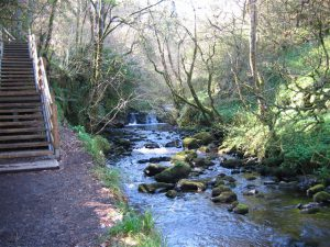 Glenariff Nature Reserve Waterfalls Walk
