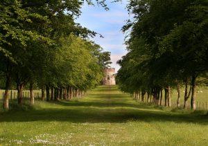 Springhill House – Sawpit Hill Walk