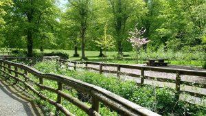 Stormont Woodland Walks & Fitness Trail