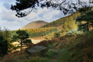 Mourne Way