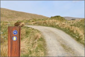 Trailmarker next to path