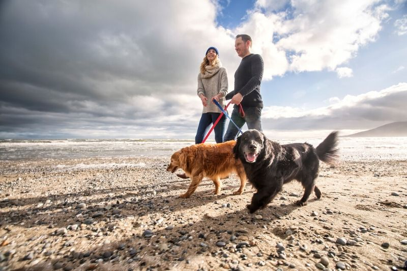 Northern Ireland's Winter Beach Walks