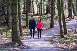 Drumkeeragh Forest – Viewpoint Trail