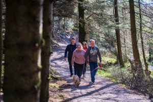 Drumkeeragh Forest – Moneynabane Trail