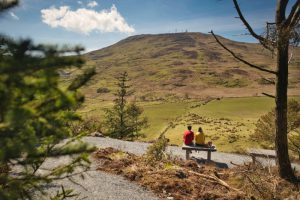 Drumkeeragh Forest – Treetop Trail