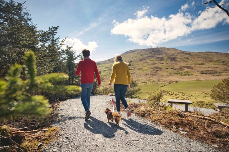 Man and women walking with dog