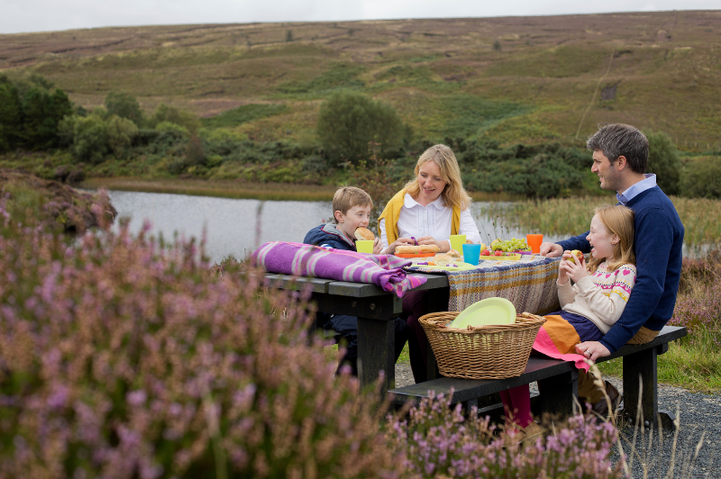 Top Picnic Spots in Northern Ireland